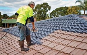 Become a Roof Reviver